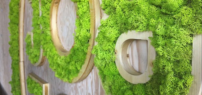 Lettrage 3D en végétal stabilisés pour bureaux