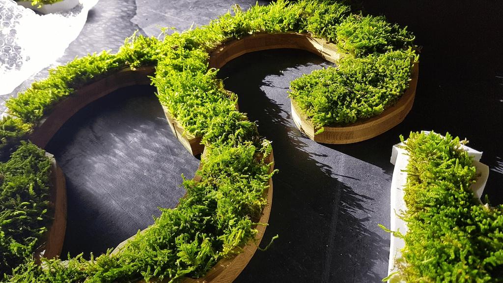 Logo 3D en végétal stabilisé pour décoration de bureaux