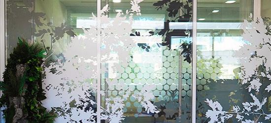 Vitrophanie bureaux avec adhésif design feuillage